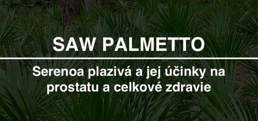 Superzdravá palma Saw palmetto (Serenoa plazivá) a jej účinky na prostatu a zdravie