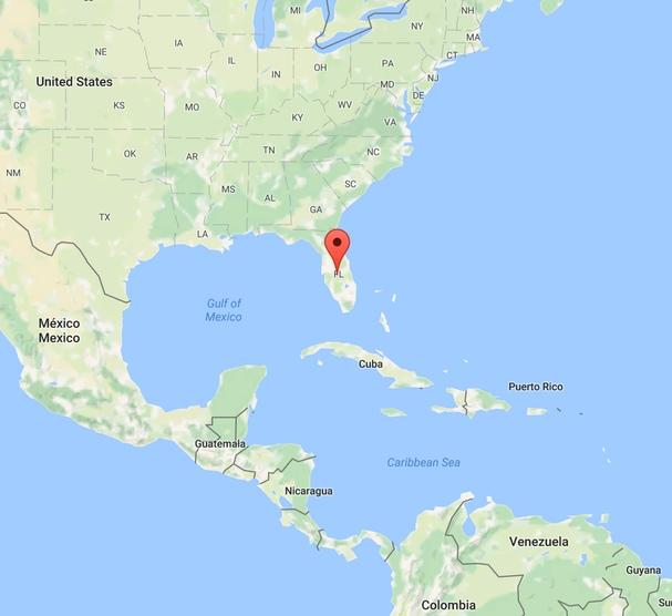 Saw palmetto (Serenoa plazivá) má pôvod v juhovýchodnej časti servernej ameriky