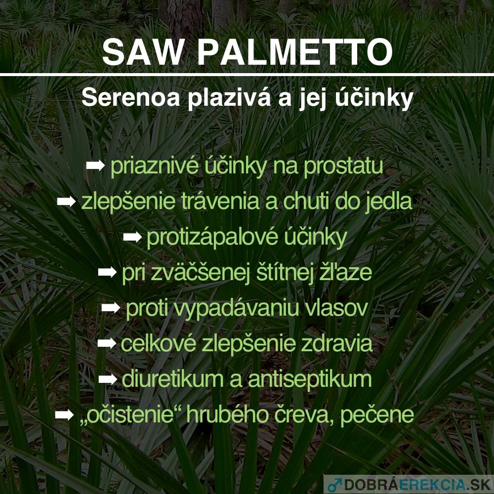 Saw Palmetto / Serenoa plazivá - účinky
