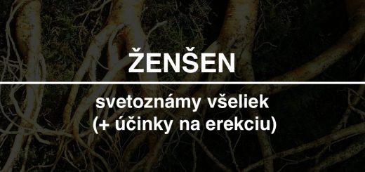 zensen-recenzia